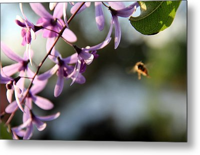 Metal Print featuring the photograph Bee Back by Greg Allore