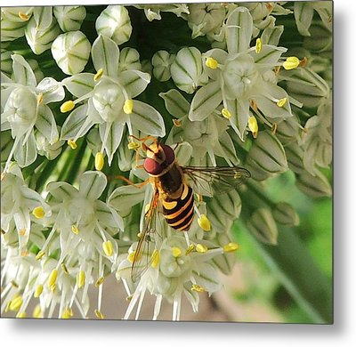 Bee Beautiful Metal Print