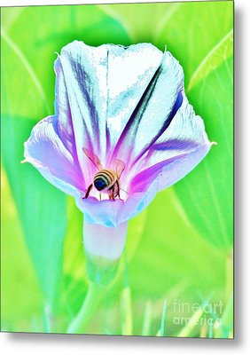 Bee In Pastel Metal Print by Craig Wood