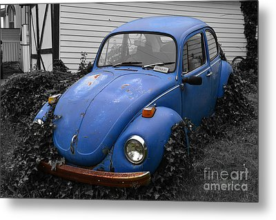 Metal Print featuring the photograph Beetle Garden by Angela DeFrias