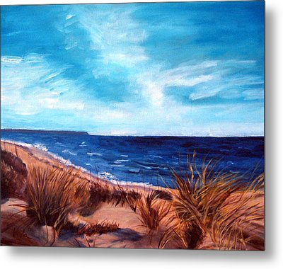 Before The Tumble At Chapin Beach Metal Print by Viola Holmgren