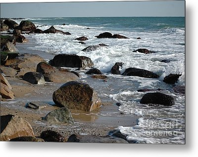 Metal Print featuring the photograph Beginnings by Christiane Hellner-OBrien