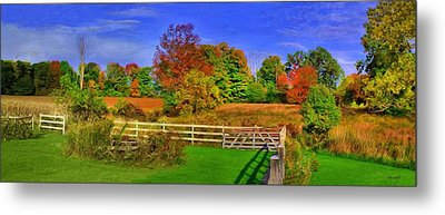 Metal Print featuring the photograph Behind The Barn by Dennis Lundell
