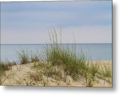 Behind The Dune Grasses 3 Metal Print