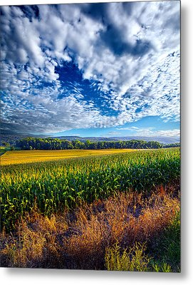 Being There Metal Print by Phil Koch