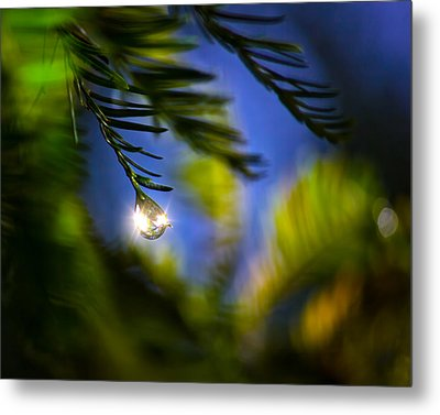 Bejeweled Metal Print by Mark Andrew Thomas