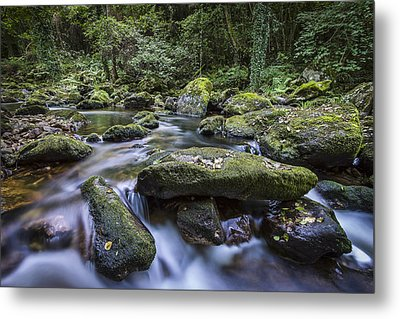 Metal Print featuring the photograph Belelle River Neda Galicia Spain by Pablo Avanzini