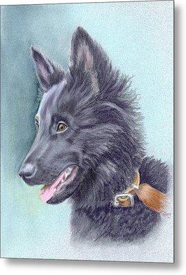 Belgian Sheepdog Puppy Metal Print