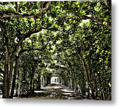 Metal Print featuring the photograph Believes ... by Juergen Weiss