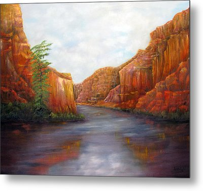Below The Rim Metal Print