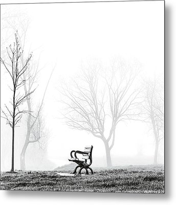 Bench Metal Print by Brian Carson