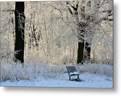 Bench In The Park Metal Print by Gynt