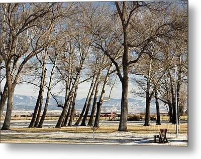 Bench With A View Metal Print by Sue Smith