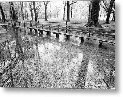 Benches Reflection Poets Walk Metal Print by Dave Beckerman