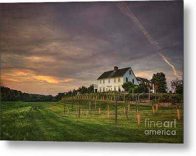 Beneath An Evening Sky Metal Print