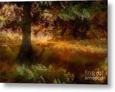 Beneath The Giants - A Tranquil Moments Landscape Metal Print