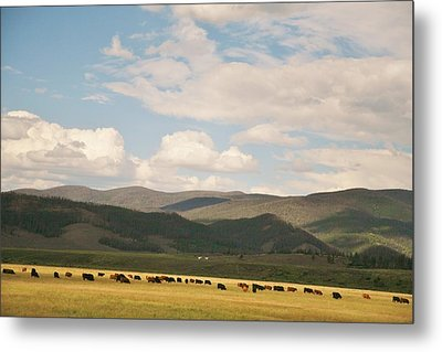 Metal Print featuring the photograph Beneath The Open Sky I Roam by Shirley Heier