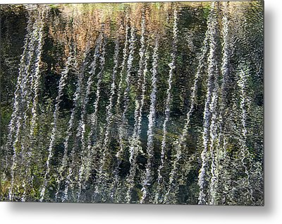 Beneath The Reflection Metal Print by Roxy Hurtubise