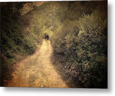 Beneath The Woods Metal Print by Taylan Apukovska