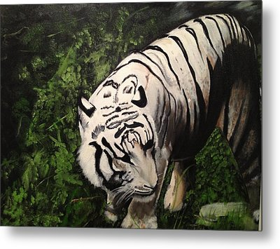 Metal Print featuring the painting Bengal's White Tiger by Brindha Naveen