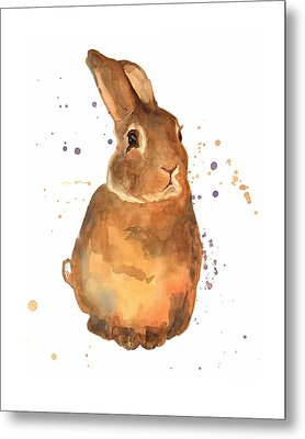 Benjamin Bunny Metal Print by Alison Fennell
