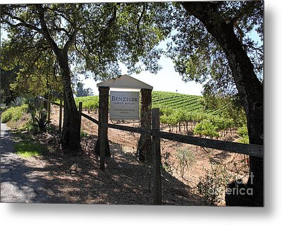 Benziger Winery In The Sonoma California Wine Country 5d24592 Metal Print by Wingsdomain Art and Photography
