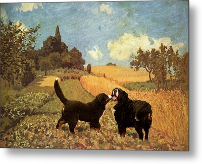 Berners In Cornfield Metal Print
