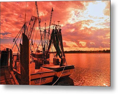 Metal Print featuring the photograph Bernice And Bubba by Dennis Baswell
