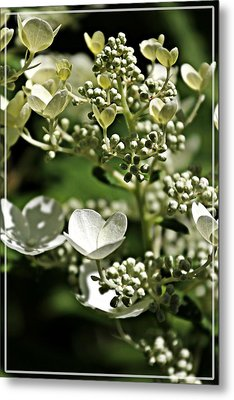 Berries And Blooms In Monochromatic Green Metal Print
