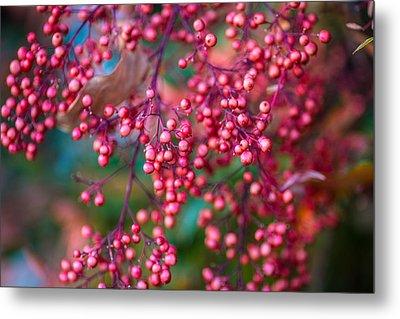 Berries Metal Print by Mike Lee