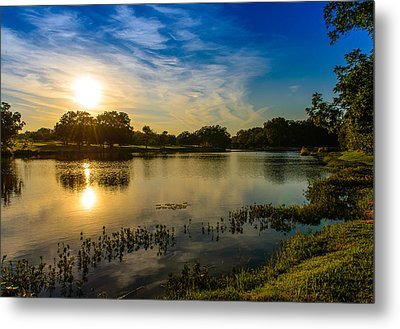 Metal Print featuring the photograph Berry Creek Pond by John Johnson