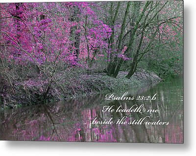 Beside Still Waters Metal Print