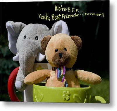 Metal Print featuring the photograph Best Friends Forever by Rhonda McDougall