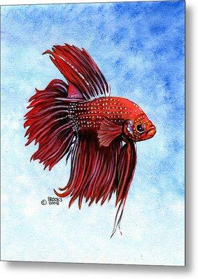 Betta-big Red Metal Print