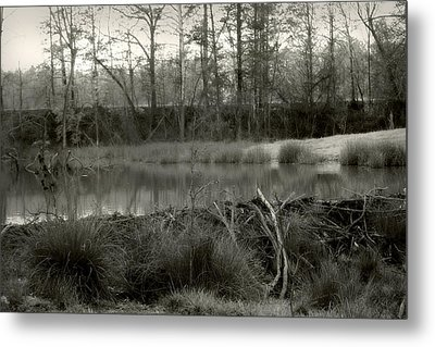 Between Now And Then Metal Print by Nina Fosdick