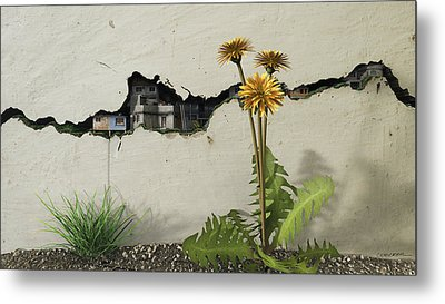Between The Cracks Metal Print by Cynthia Decker