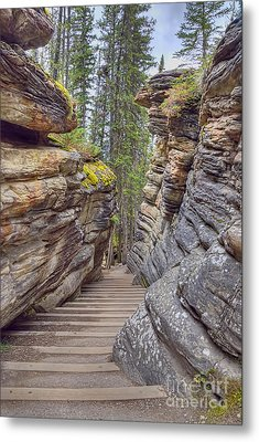 Between The Stones Metal Print by Wanda Krack