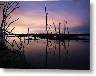 Between Two Worlds By Denise Dube Metal Print by Denise Dube