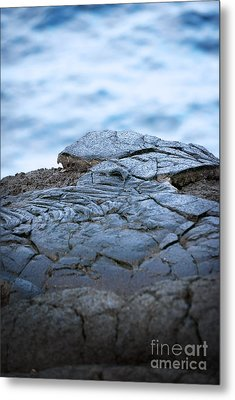 Metal Print featuring the photograph Between You And Me by Ellen Cotton