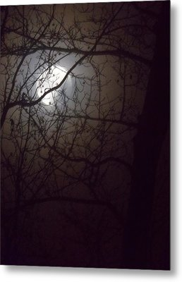 Metal Print featuring the photograph Beware The Rougarou Moon by John Glass