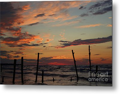 Metal Print featuring the photograph Beyond The Border by Barbara McMahon