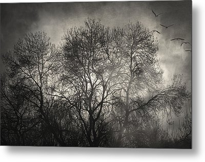 Beyond The Morning Metal Print by Taylan Apukovska