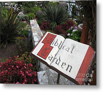 Metal Print featuring the photograph Biblical Garden by James B Toy