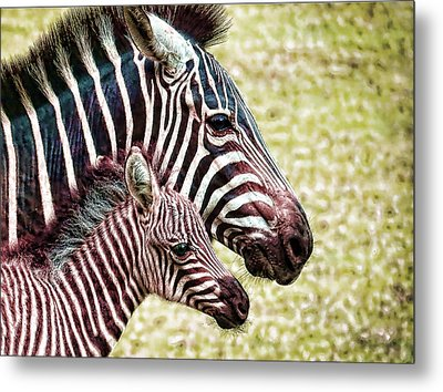 Metal Print featuring the photograph Big And Little by Jaki Miller