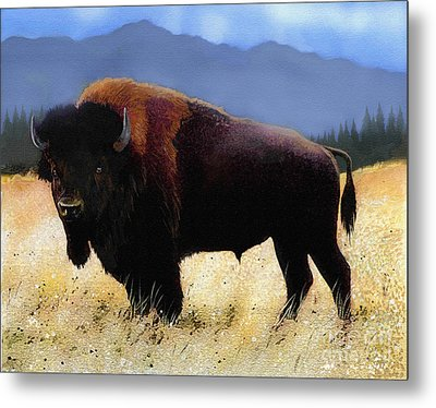Big Bison Metal Print