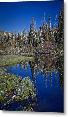 Big Cottonwood Canyon  Metal Print by Richard Cheski