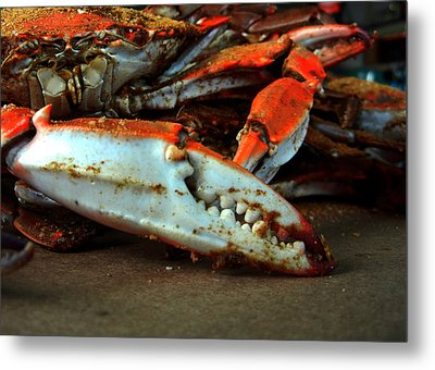 Metal Print featuring the photograph Big Crab Claw by Bill Swartwout
