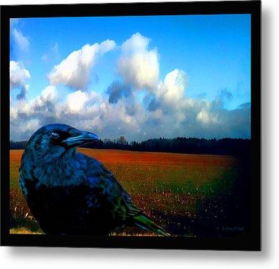 Big Daddy Crow Series Silent Watcher Metal Print