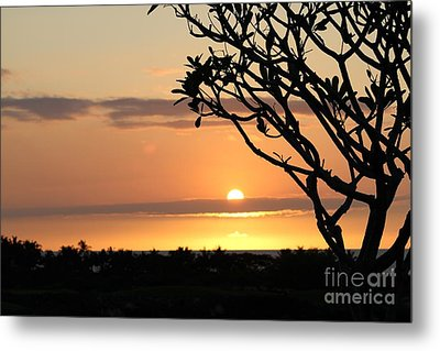 Big Island Sunset All Profits Go To Hospice Of The Calumet Area Metal Print
