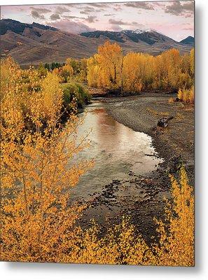Big Lost River In Autumn Metal Print by Leland D Howard